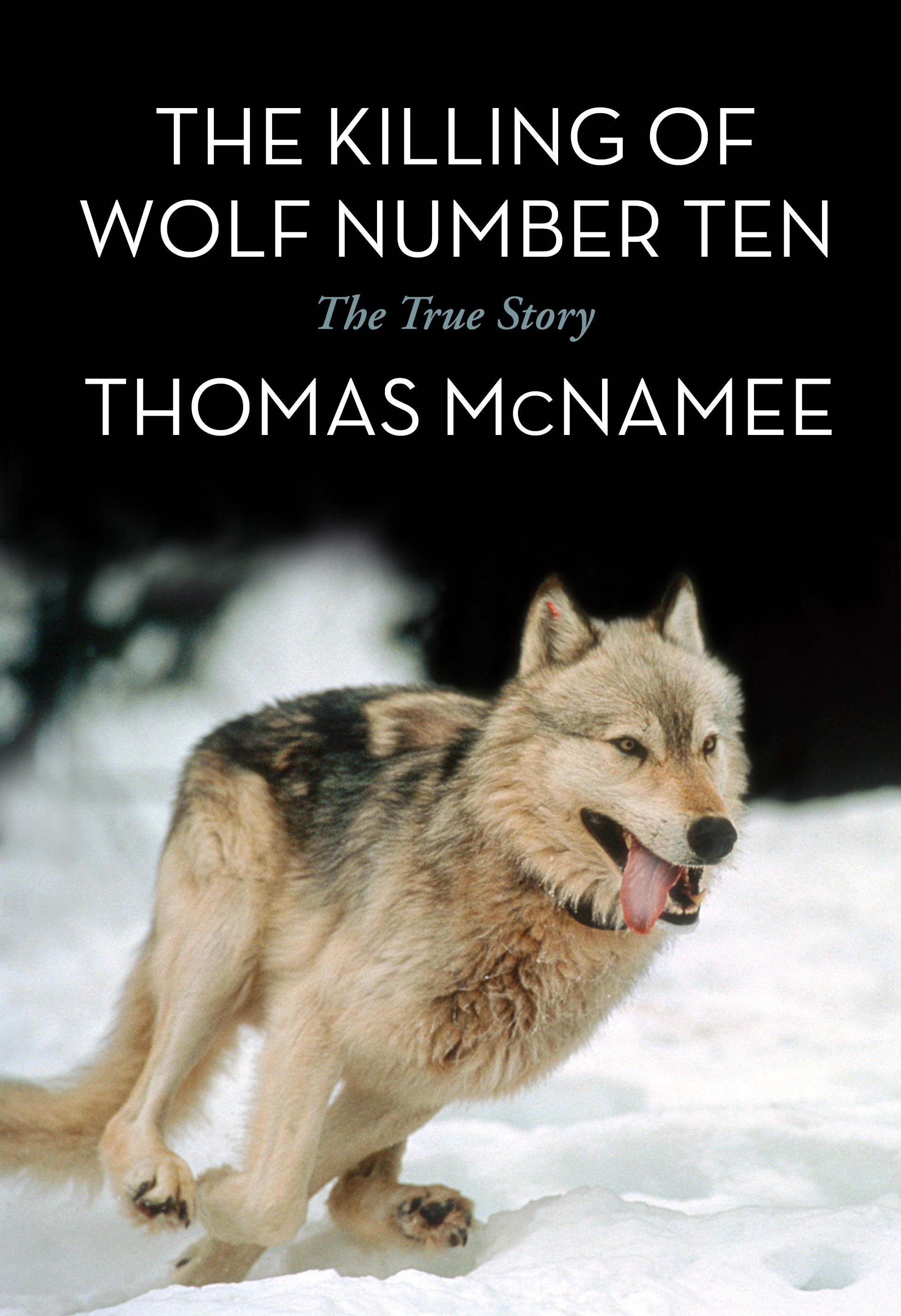 Fiction nonfiction books prospecta press prospecta press the killing of wolf number ten the true story by thomas mcnamee paperback 144 pages with over 50 bw photographs and charts fandeluxe